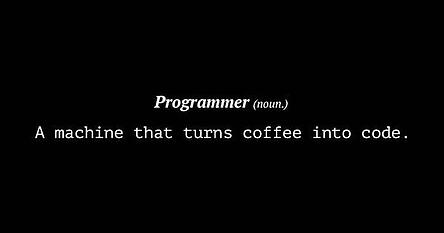 Definition of a Programmer.jpg